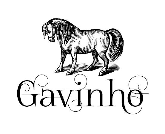 Gavinho